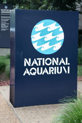 Photo of sign outside D.C.'s National Aquarium in 2008. Image Source: Wikimedia Commons