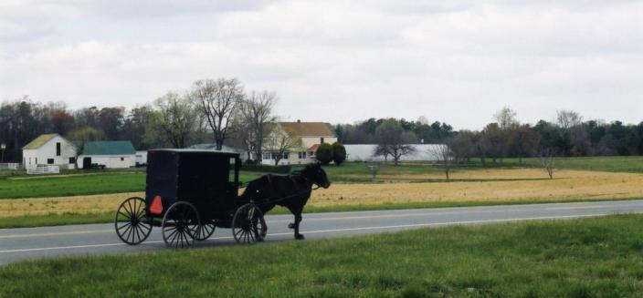 Amish horse and buggy on the road in Southern Maryland. (Courtesy of St. Mary's College of Southern Maryland Archives.)